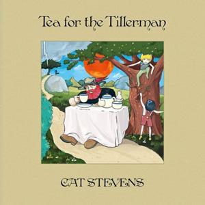 Альбом Tea For The Tillerman