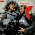 Обложка альбома Cucumber Castle