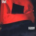 Обложка альбома Storm Front