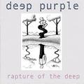 Обложка альбома Rapture of the Deep