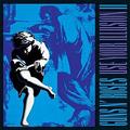 Обложка альбома Use Your Illusion II