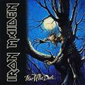 Обложка альбома Fear of the Dark