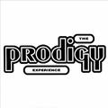 Обложка альбома Experience