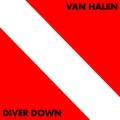 Обложка альбома Diver Down