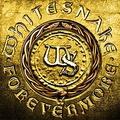 Обложка альбома Forevermore