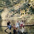 Обложка альбома Wild Life